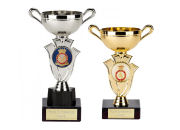 Cadet Forces Cups