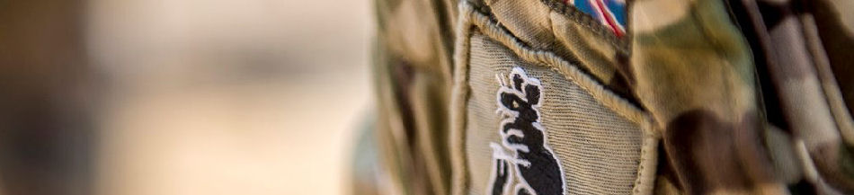 Tactical Recognition Flashes | Military Patches | British Army Flashes